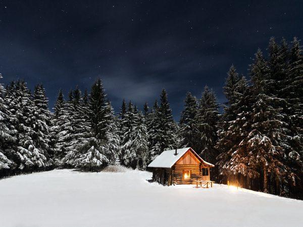 winterbedding